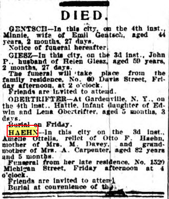 Amelia Haehn - death notice - Buffalo Courier - 5-July-1894